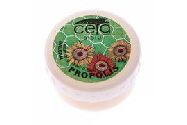 Unguent cu propolis, 20 g, Ceta